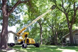 Mini-Jarraff Urban Tree Trimmer